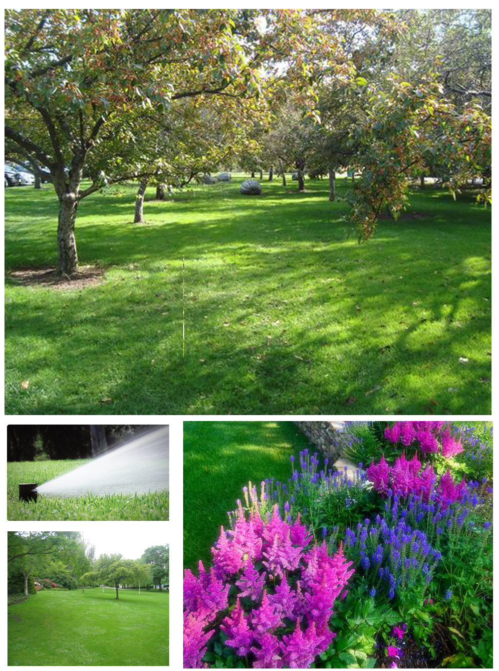 NH Home Irrigation Installation and Repair